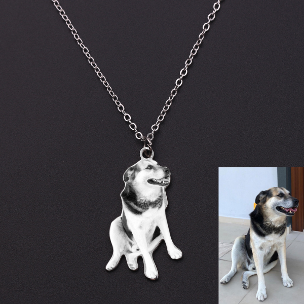 Personalized Stainless Steel Custom Pet Photo Engraved Necklace